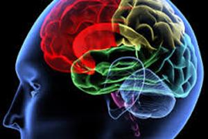 the-main-symptoms-of-concussion